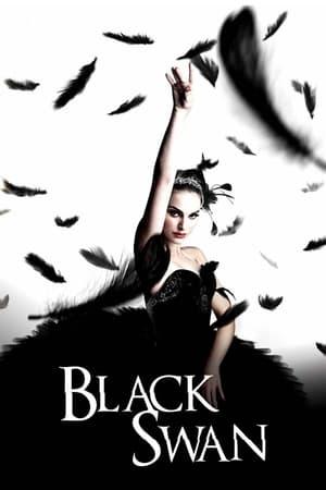 Fekete hattyú poszter