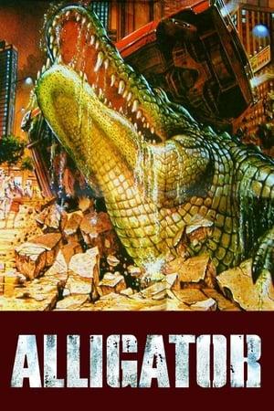 Az aligátor poszter