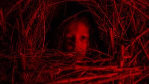 Közönséges horrorsztori háttérkép
